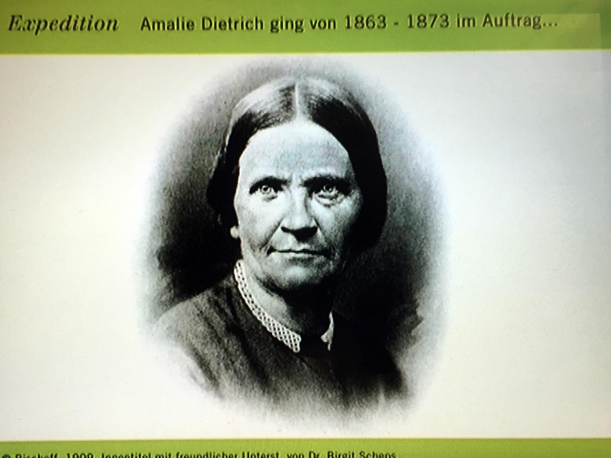 Reprografie Amalie Dietrich im Museum für Naturkunde, Berlin ©K. Schwahlen 2019